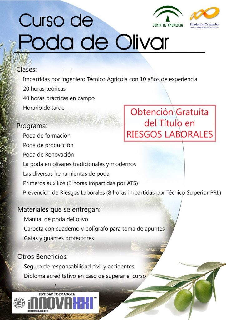cartel curso de poda del olivar innova xxi agro