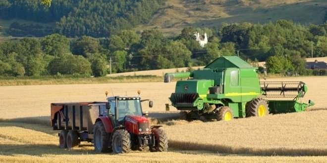 cosechadora y tractor recolectando trigo