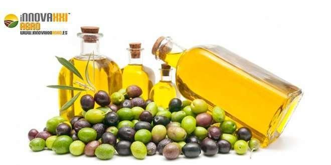 botellas de aceite de oliva sobre olivas