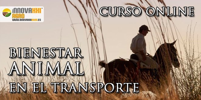 post bienestar animal en el transporte