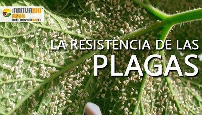 RESISTENCIA DE LAS PLAGAS