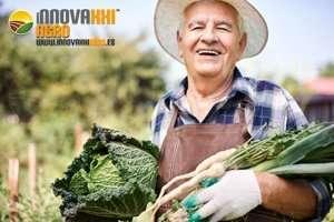 agricultor INNOVA XXI AGRO