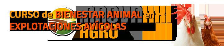 CURSO BIENESTAR ANIMAL