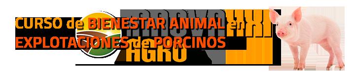 CURSO BIENESTAR ANIMAL PORCINOS