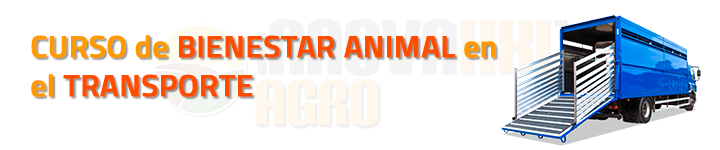 CURSO BIENESTAR ANIMAL TRANSPORTE
