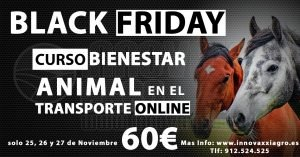Black Friday en Bienestar Animal en el Transporte