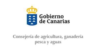 Logo Canarias homologacion Innova XXi