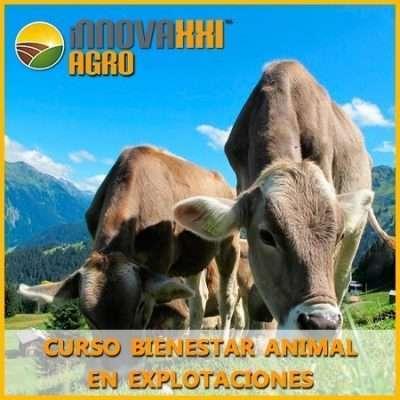 Bienestar Animal en Explotaciones
