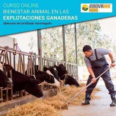Curso Online Bienestar Animal en Explotaciones Ganaderas