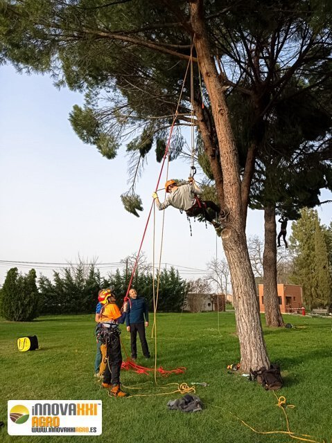 curso-iniciacion-trepa-poda-altura (8)